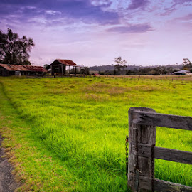 Into the country by Jose Rojas - Landscapes Prairies, Meadows & Fields ( rural scenery, field, landscape, country,  )