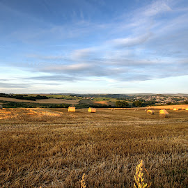 fields looking over huddersfield by Keith's Captures - Landscapes Prairies, Meadows & Fields ( raw, clouds, wheat, veiw, straw, grass, beautiful, land, bales, huddersfield, farmfield, landscape, sun, farm, sky, wide angle, trees, nef, fields )