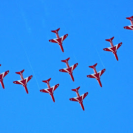 Red Arrows Arrow by Ingrid Anderson-Riley - Transportation Airplanes