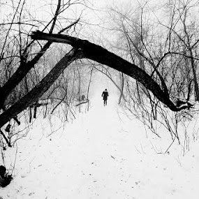 Creepy by Giuseppe Conti - Black & White Landscapes ( winter, landscape )
