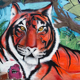 Tiger of Tennyson Street, Denver, CO by Jo Brockberg - Buildings & Architecture Other Exteriors (  )