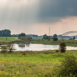 Meinerswijk by Tim Abeln - Landscapes Prairies, Meadows & Fields ( water, clouds, bird, meinerswijk, hdr, grass, sunset, beams, bridge, yellow, flowers )