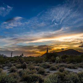 Desert for Dessert by Dayton Bintz - Landscapes Deserts ( mountains, sky, desert, sunset, cactus )