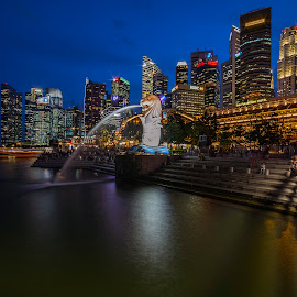 by Gordon Koh - City,  Street & Park  City Parks ( shenton way, icon, skyline, merlion, blue hour, travel, cityscape, singapore, city, riberfront, landmark, skyscraper, financial district, buildings, asia, jubliee bridge, waterfront )