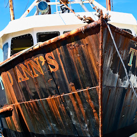 Seen Better Days by Nina VanDeleur - Transportation Boats ( rusting, two ann's )