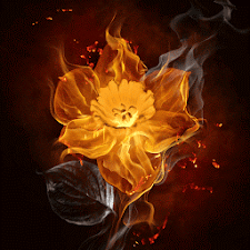 Flower Flame