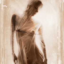 Kitte behind the curtain by Vineet Johri - Nudes & Boudoir Artistic Nude ( girl behind curtain, art nude, vintage, vkumar photography, kittie )