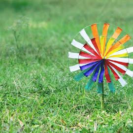 COLORFULL PIN WHEEL by Mori Harshad - Abstract Macro ( toy, abstract art, wallpaper, greenery, pinwheel, colorfull, photooftheday )