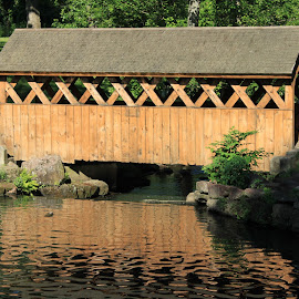 Bridge to Nowhere by Steve Shelasky - City,  Street & Park  City Parks ( stroll, forest park, nature, park, springfield, covered bridge, ma, walk, pond, relax, tranquil, relaxing, tranquility )