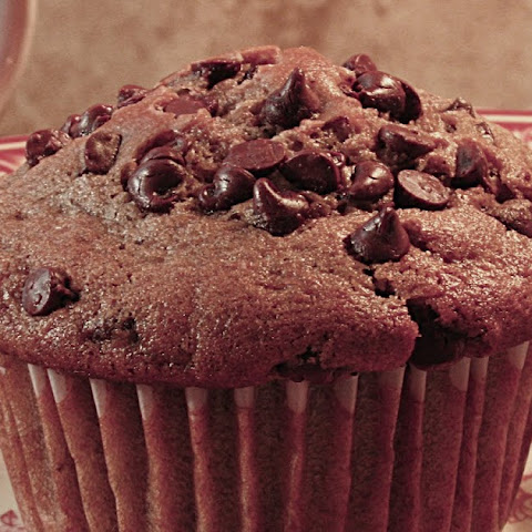 Chocolate Muffins with Mini-Chocolate Chips
