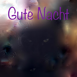Gute Nacht by Marianne Fischer - Typography Words