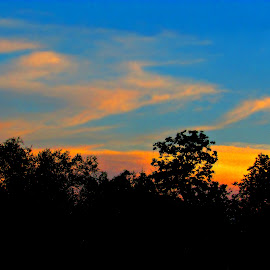 Rule Of Thirds by Vince Scaglione - Landscapes Weather ( clouds, sky, tree, silhouette, rule, weather, cloud, silhouettes, trees, third )