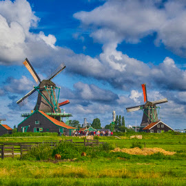 Fields of Zaanse Schans by Pravine Chester - Landscapes Prairies, Meadows & Fields ( nature, zaanse schans, meadows, windmills, landscape, photography, netherlands, fields )