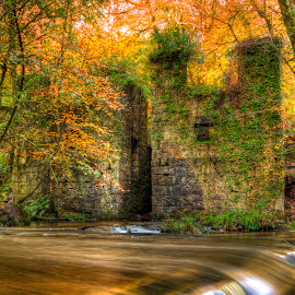 Kennal Vale by Mitch Featherbe - Landscapes Waterscapes ( colour, water, hdr, movement, beauty in nature )