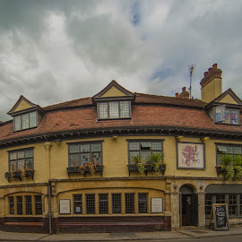 the RED LION by Yordan Mihov - Buildings & Architecture Public & Historical ( lion, england, uk, red, oxford, pub )