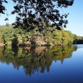 Mirrroring in a forest park by Luboš Zámiš - Landscapes Waterscapes