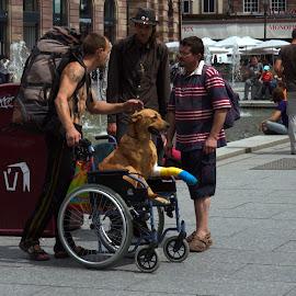 ... by Alik Zlotnik - People Street & Candids (  )