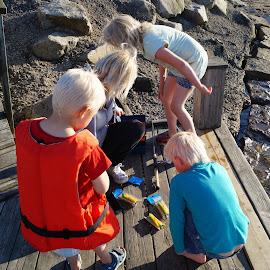 Crab Fish by Brynhilde Bålerud - People Family ( KidsOfSummer )