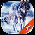 Ice Wolf Live Wallpaper 3D APK for Ubuntu