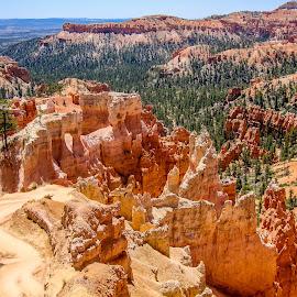 Bryce Canyon by Sergey Sibirtsev - Landscapes Travel ( national park, bryce canyon national park, utah, from above, national parks, landscape, usa, bryce canyon,  )