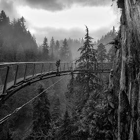 Long Way Down by Steve Badger - Black & White Landscapes (  )