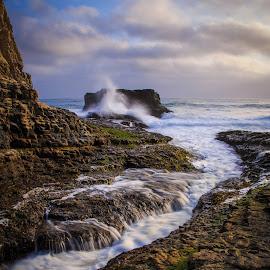 Davenport Crack by Gannon McGhee - Landscapes Waterscapes ( davenport, california, crack, ocean, beach )