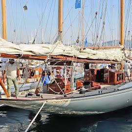 Vintage sailboat by Victor Eliu - Sports & Fitness Watersports ( cannes, sailboats, vintage, sailing, water sport, sports, france, regatta )