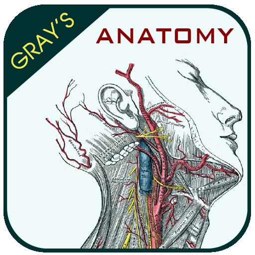 Gray's Anatomy - Atlas (app)