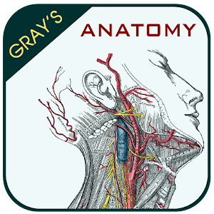 Gray's Anatomy - Atlas for Android