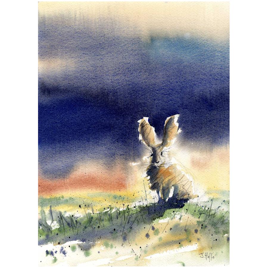 Hare rabbit art painting original watercolour