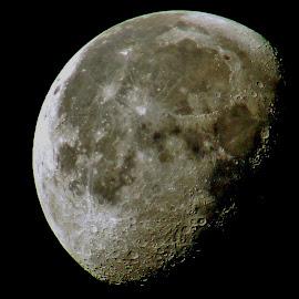 Lunar Landscape by Howard Sharper - Landscapes Starscapes ( moonset, moon, craters, lunar, landscape, moonlight,  )