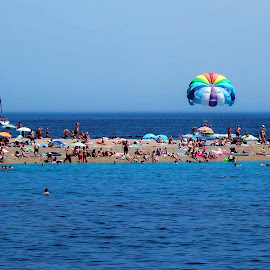 Zlatni rat beach Bol sports activity by Bernarda Bizjak - City,  Street & Park  Vistas