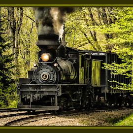 Lone Pine by James Eickman - Transportation Trains (  )
