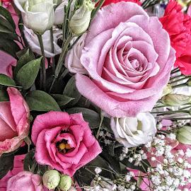 DNI disp 20 by Michael Moore - Flowers Flower Arangements (  )