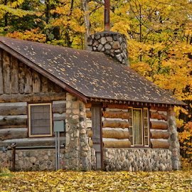 Cabin in the Woods by Luanne Bullard Everden - Buildings & Architecture Other Exteriors ( forests, autumn, logs, cabins, buildings, trees, leaves )