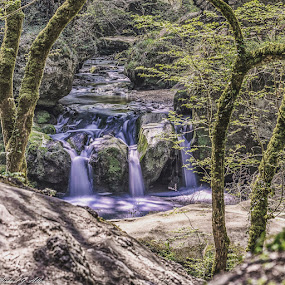 Waterfall along Mullerthral Trail, Luxembourg  by Mike Allen - Landscapes Mountains & Hills ( waterfall nature trail water stream trees,  )