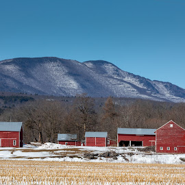 Lasher Farm by Bob Ricketson - Buildings & Architecture Other Exteriors ( greene county, winter, february, catskills, sunny, snow, hudson valley, wandering, landscape )