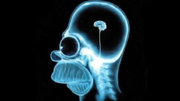 10% brain