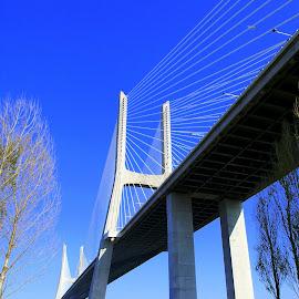 Ponte Vasco da Gama by Isa Pat - Buildings & Architecture Bridges & Suspended Structures ( ponte, parque nações, ponte vasco da gama, lisboa )