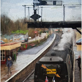 by Stephen Hooton - Transportation Trains ( january, art, golden arrow, train, railways. )