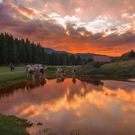 Sunset at the mountain pond by Stanislav Horacek - Landscapes Sunsets & Sunrises