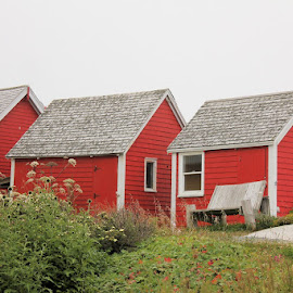 Three In a Row by Lena Arkell - Buildings & Architecture Other Exteriors ( red, shed, atlantic, green, canada, nova scotia, sheds,  )