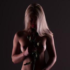 Rose by Lukáš Stehlík - Nudes & Boudoir Artistic Nude ( rose, nude, red, woman, akt, dark )