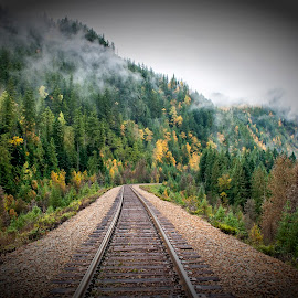 CP Rail Line by Corey Yeatman - Transportation Trains ( clouds, nature, railway, colors, fall )
