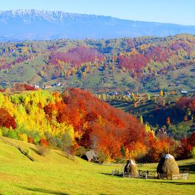 by Bica Razvan - Landscapes Mountains & Hills (  )