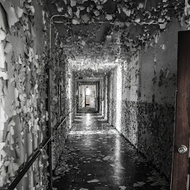 Shedding its Skin  by Greg Sommer - Buildings & Architecture Decaying & Abandoned