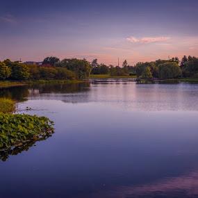 Silence. by Gene Brumer - Landscapes Sunsets & Sunrises ( water, tree, blue, blue hour, silence, lake )