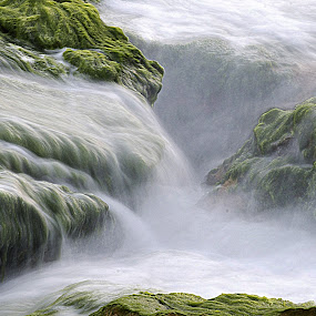 wave by Yuval Shlomo - Nature Up Close Rock & Stone
