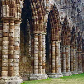 Whitby Abbey by Heather Aplin - Buildings & Architecture Decaying & Abandoned (  )