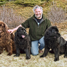 A Man And His Dogs by Harold Bradley - Animals - Dogs Portraits ( proud owner, newfoundland dogs, color, colorful, owner, three, rare brown color, portrait, dos )